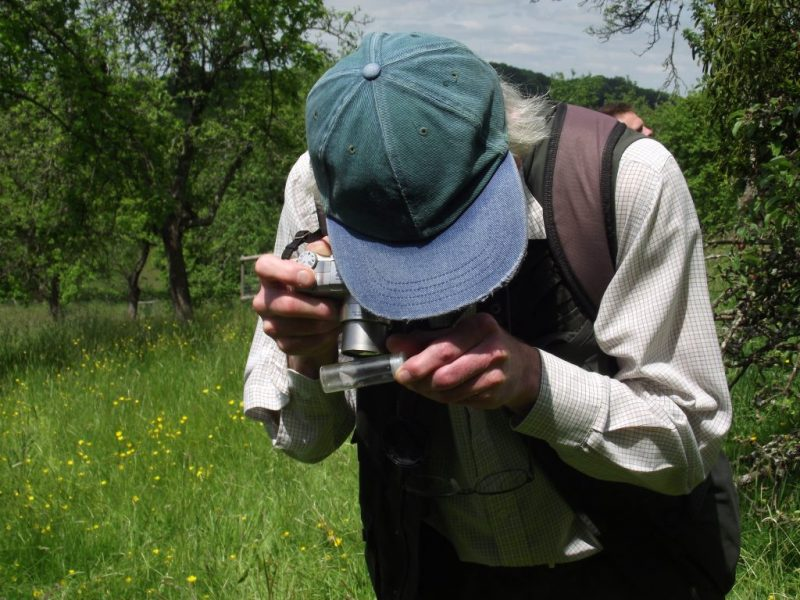 photographing moths