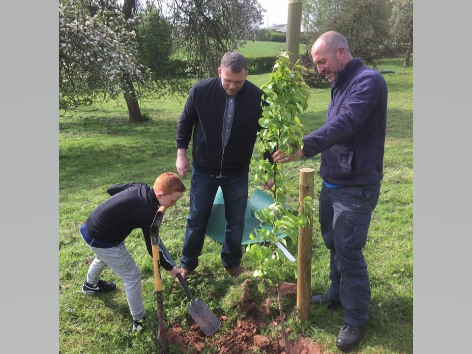 Volunteers Planting at a Rochford orchard, Worcestershire